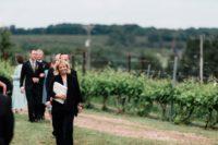 Vineyard-at-Black-Star-farms.jpg